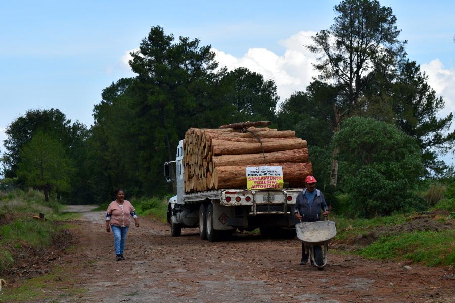 Entre plagas, incendios, sequía y burocracia, pobladores rescatan a la Malinche
